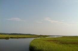 New England Estuary