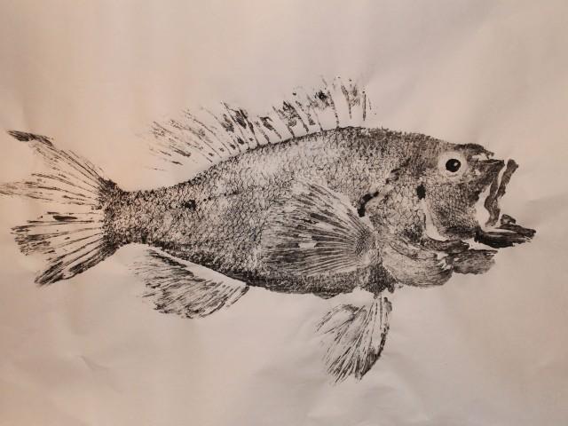 Black Sea Bass Gyotaku