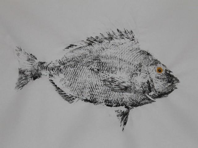 Scup Gyotaku