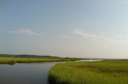 New England Estuary