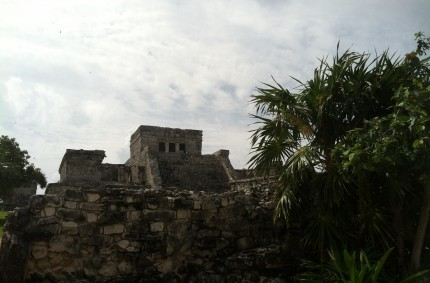 Under A Mayan Sky
