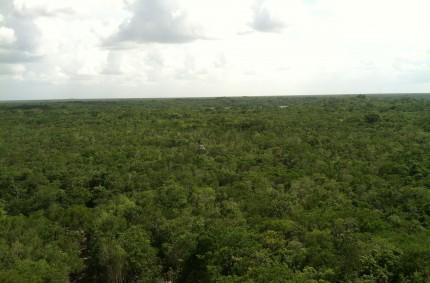 The Yucatan